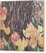 April On Pearl St Wood Print