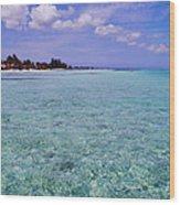 Aqua Blue Wood Print