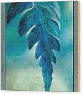 Aqua Fern Wood Print