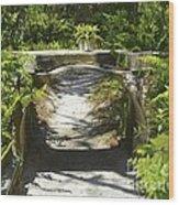 Aquaduct Wood Print