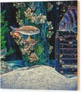 Aquarium Art Wood Print