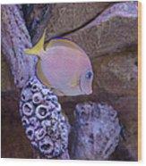 Aquarium Impression Wood Print