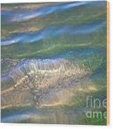 Aquatic Motion Wood Print
