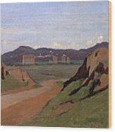 Aqueduct Wood Print