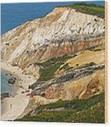 Aquinnah Clay Cliffs Marthas Vineyard Wood Print