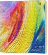 Arabian Desert Rainbow Wood Print
