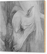 Arabian Gentleness Wood Print