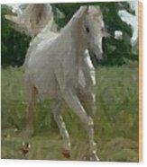 Arabian Horse Abstract Wood Print