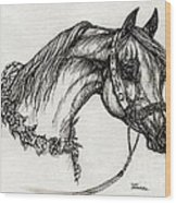 Arabian Horse Drawing 22 Wood Print