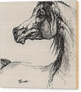 Arabian Horse Drawing 26 Wood Print