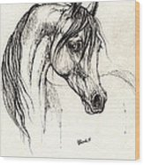 Arabian Horse Drawing 28 08 2013 Wood Print