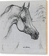 Arabian Horse Drawing 28 Wood Print