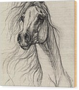 Arabian Horse Drawing 37 Wood Print