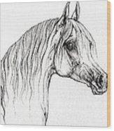 Arabian Horse Drawing 47 Wood Print