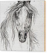 Arabian Horse Drawing 55 Wood Print