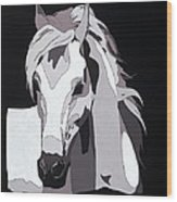 Arabian Horse With Hidden Picture Wood Print