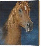Arabian Horse Portrait Wood Print