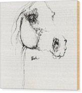 Arabian Horse Sketch 2014 05 24 Wood Print