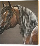 Arabian Mare Wood Print