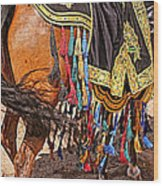 Arabian Native Show Wood Print