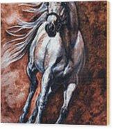 Arabian Purebred Wood Print