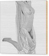 Nude Odalisque Wood Print