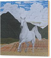 Araboam Stallion 3 Wood Print