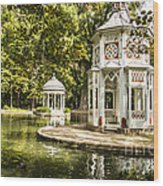 Aranjuez Park Lake Wood Print by Stefano Piccini