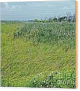 Aransas Nwr Coastal Grasses Wood Print