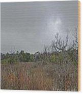 Aransas Nwr Texas Coastland Wood Print