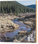Arapaho National Forest Wood Print