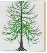 Araucaria Prehistoric Tree Wood Print