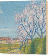 Arbes En Fleurs A L'entree De Cailhavel Wood Print