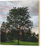 Arbor Wood Print
