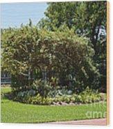 Arbor At Historical Park Wood Print