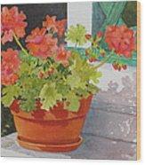 Arbor Gallery Steps Wood Print by Mary Ellen Mueller Legault