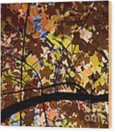 Arboretum Fall Wood Print