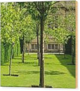 Arboretum  Wood Print