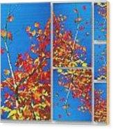 Arbre Eclat Wood Print