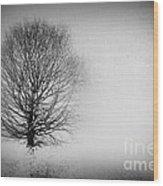 Arbrensens - Vbv02 Wood Print
