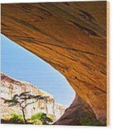 Arch 42 Wood Print