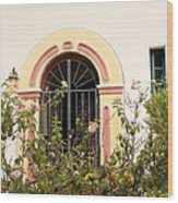 Arched And Gated Wood Print