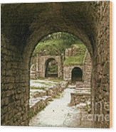 Arched Entrance To Fiesole Theatre Wood Print