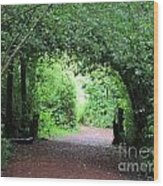 Arched Pathway Wood Print by Melissa Stinson-Borg