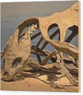 Archelon Relic Wood Print