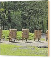 Archery Range Wood Print