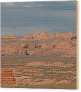 Arches National Park 13 Wood Print
