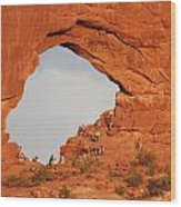 Arches  National Park 14 Wood Print