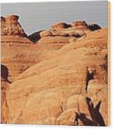 Arches Ational Park 9 Wood Print