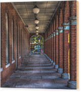Arches And Columns Wood Print
